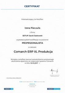 Irena Pieczulis XL Produkcja